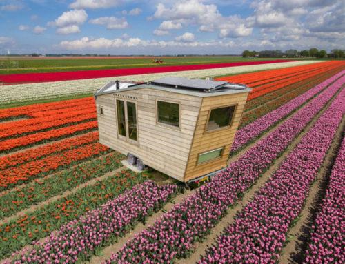 Een tiny house, waarom zou je daarin willen wonen?